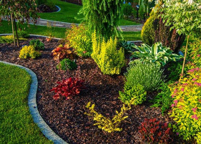 ranker lawn care landscaping service toledo