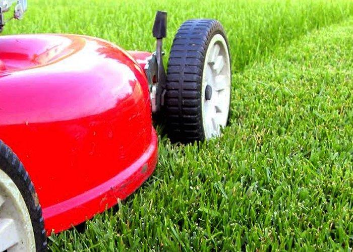 ranker lawn care lawn mowing toledo